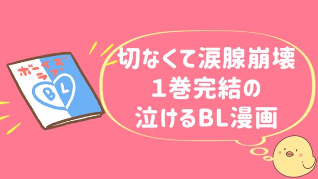 BL 泣ける 一巻完結